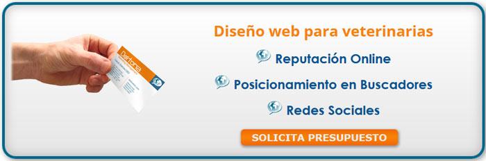 paginas web diseño, diseño web rio cuarto, diseñadores web argentina, diseño de sitios web argentina, diseñador de paginas web cursos, cursos para diseñar paginas web,
