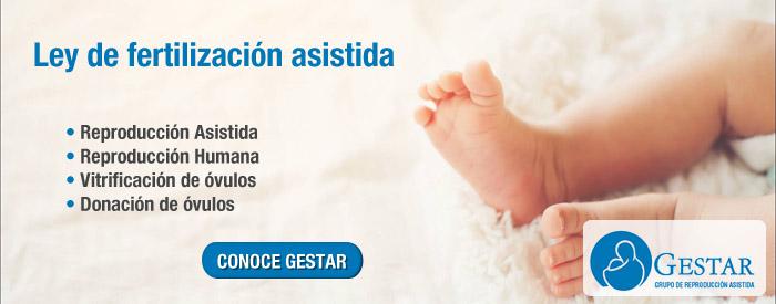 ley reproduccion asistida, ley de fertilidad, ley fertilidad asistida, ley fertilidad, ley de fertilizacion asistida, ley reproduccion asistida, fertilizacion asistida, clinica de fertilidad